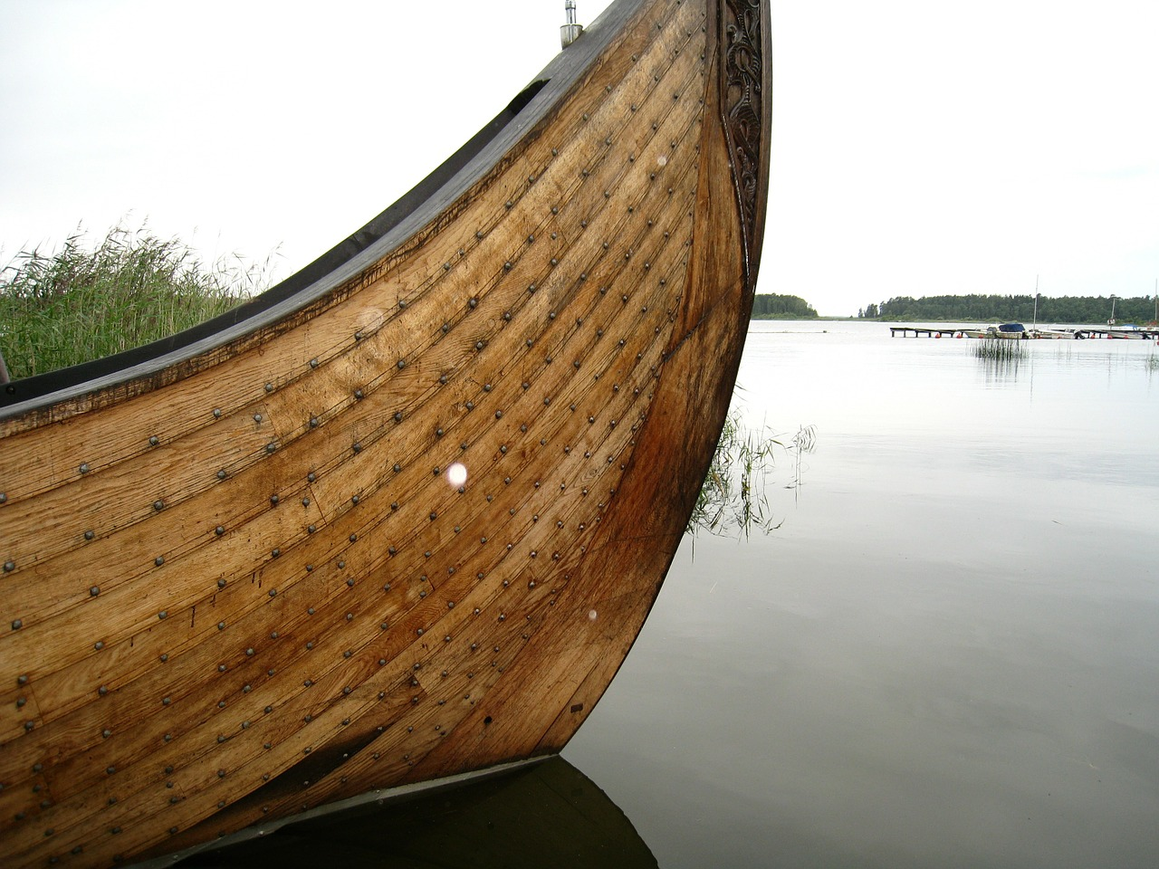 How many Viking warriors were women?