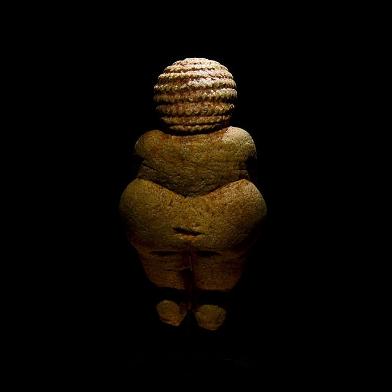 What can the Venus of Willendorf teach us today?